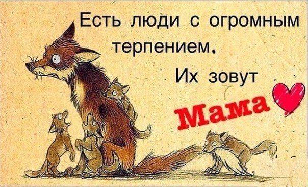 Серёга Палевов