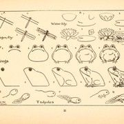 The 100+ year old book contains all sorts of images that children can learn to draw.