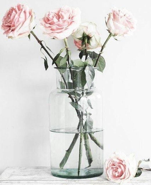 #bellamummablooms #rose #love