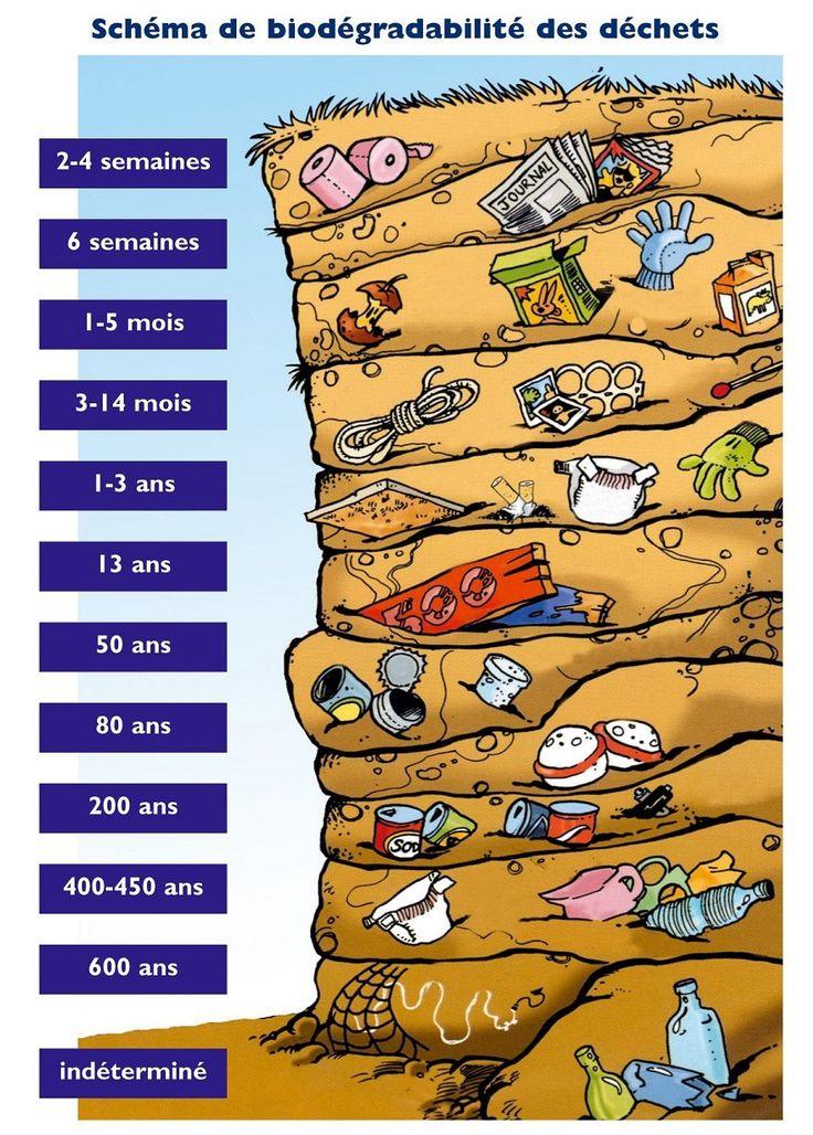 Infographie : Durée de vie des déchets                                                                                                                                                      Plus