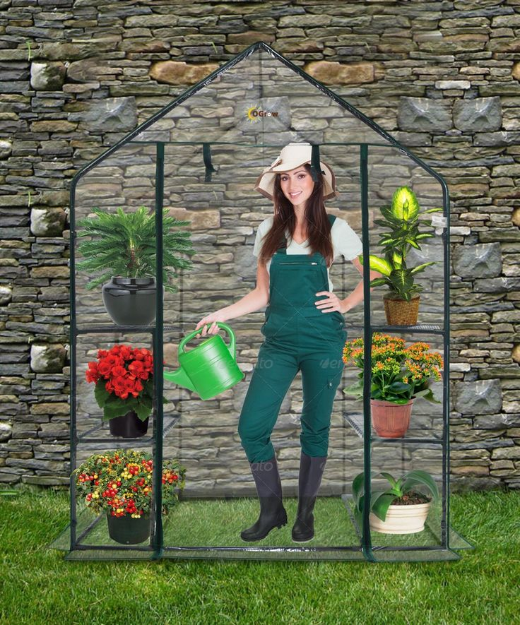 What Are The Best Portable Greenhouse Kits?
