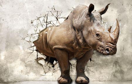 Дизайнерские фотообои - Носорог