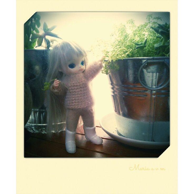 my cute little dal+