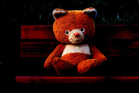 Red bear:  Teddy Bears, Red Bears, Bears Picnics