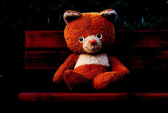 Red bear:  Teddy Bears, Red Bears, Bears Picnics