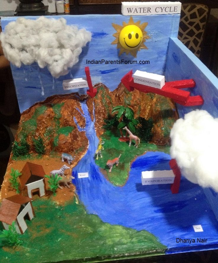 How To Make 3D Model Of Water Cycle - school science project