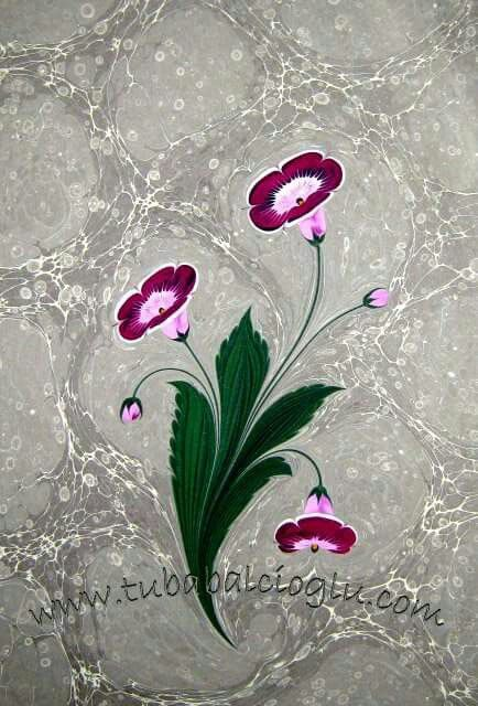 Tuba Balcıoğlu Gloksinya Çiçeği