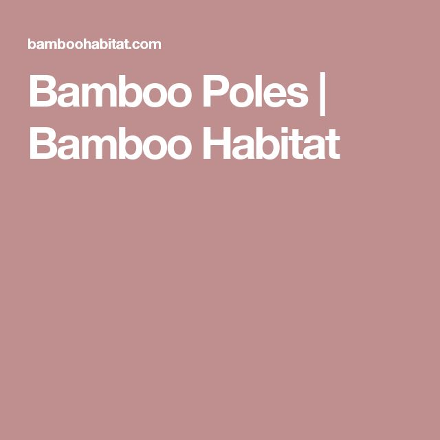 Bamboo Poles | Bamboo Habitat