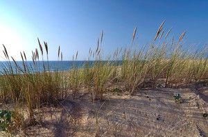 Labenne-Océan plage
