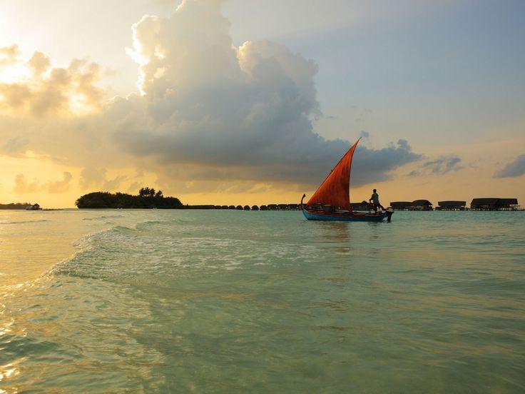 Cocoa Island | Maldives Island Resort
