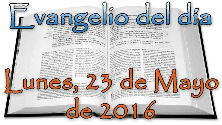 Evangelio del día (Lunes, 23 de Mayo de 2016)
