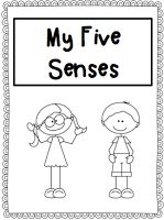 Five Senses Book - Freebie!