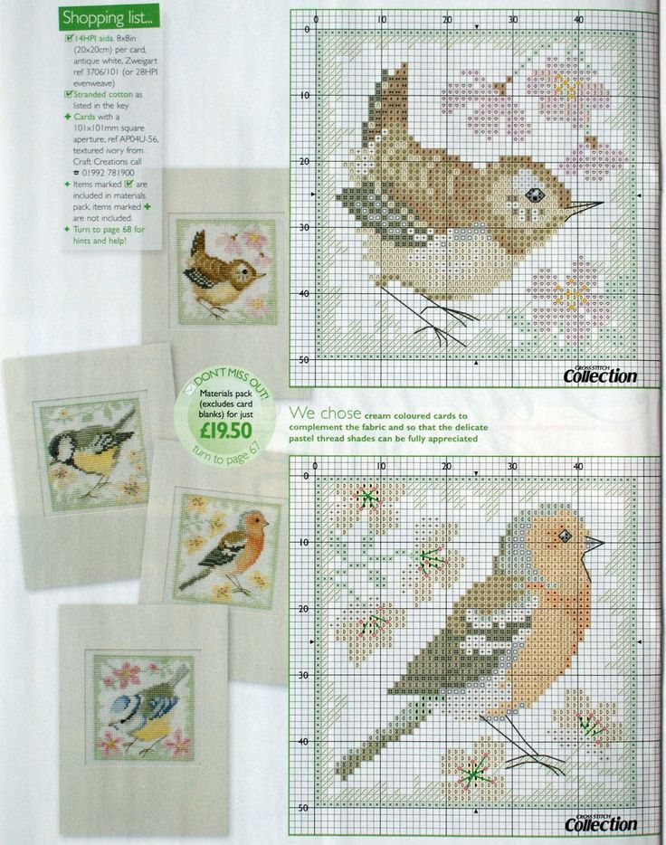 .Birds cross stitch part 1