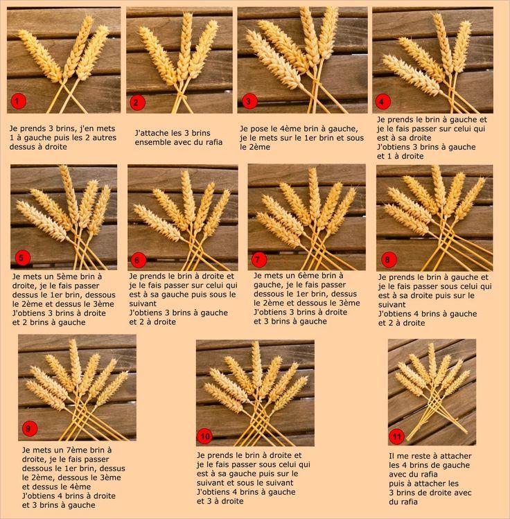 7 épis de blé à tresser ...