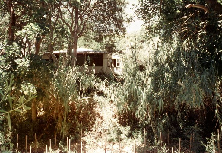 6 Stanton Road Mosman, January 1970.This house was demolished to make way for a two-storey brick dwelling which was completed in September 1971. From the 1920s this beach shack at no. 6 Stanton Road was known as 'Dixie' and owned by Dr Erasmus Bligh