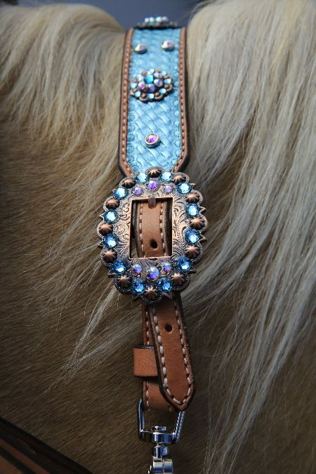 Jozee Girl now carries Copper Horse Tack with Genuine Swarovski Crystals.  Check out this Teal Wither Strap!