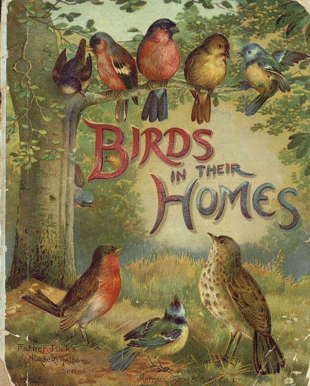 http://ufdc.ufl.edu/UF00080720/00001 MISSING IMAGE Material Information  Title: Birds in their homes Series Title: Artistic series Physical Description: [12] p. : ill. ; 28 cm. Language: English Creator: Raphael Tuck & Sons ( Publisher ) Publisher: Raphael Tuck & Sons Place of Publication: New York London Publication Date: [189-] Subjects  Subjects / Keywords: Birds -- Juvenile literature   ( lcsh ) Bldn -- 1895