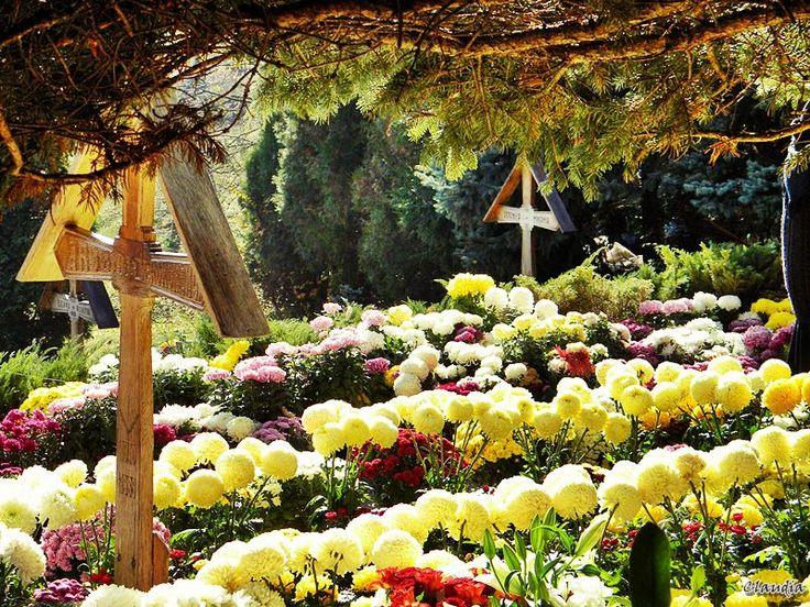 La capătul lumii, la mormântul Părintelui Arsenie Boca de la Mănăstirea Prislop...