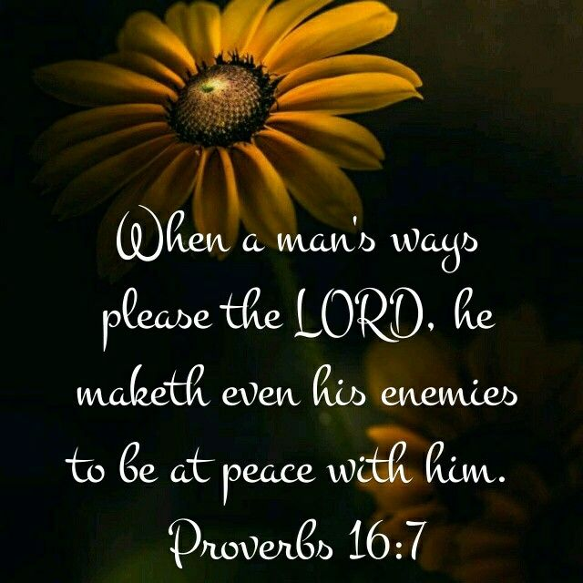 Proverbs 16:7 KJV That doesn't mean that if your enemies aren't at peace with you, then you're not doing it right. The Bible also says to be at peace with all men as much as lieth within u.