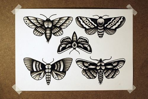 Traditional black old school style moth tattoo design collection ...