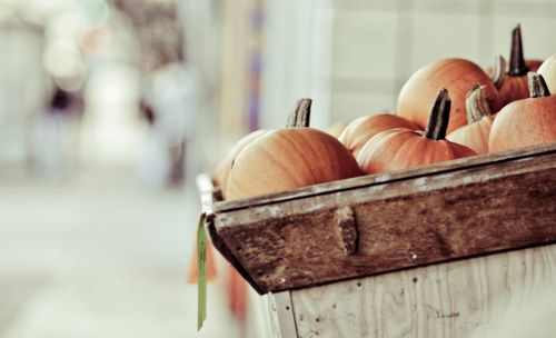 : Holiday, Fall Favorites, Autumn S Spell, Autumn Halloween, Color, Fall Autumn, Photo