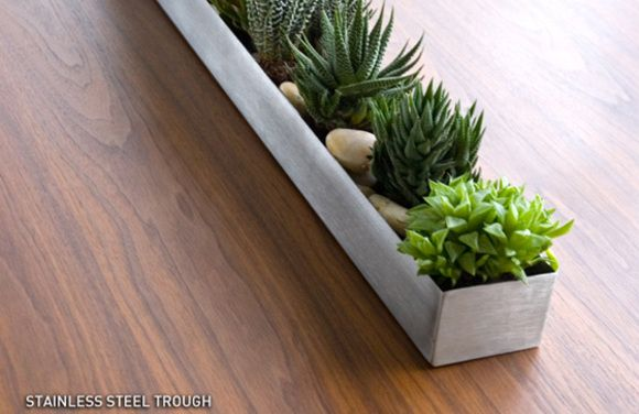 Mini Succulents Tray Brown Thumb Pinterest Planters