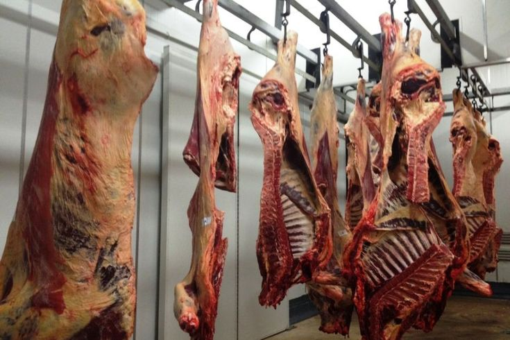 Meatworks Google Search Student Mason Pinterest