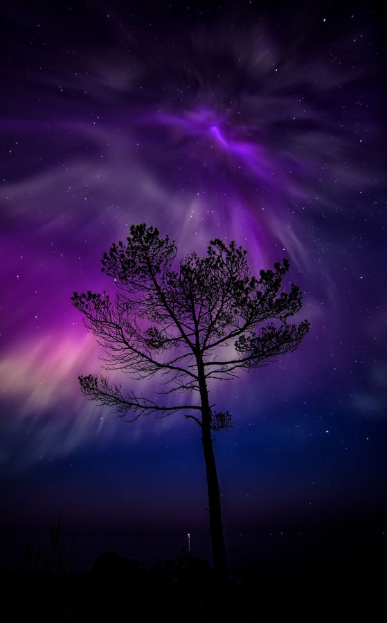 Aurora Borealis In Porvoo Finland (by Jari Johnsson)