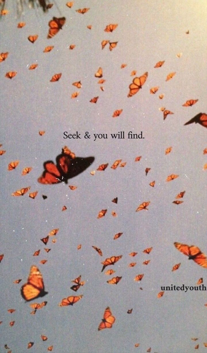 Personal Growth in 2020   Butterfly wallpaper iphone ...