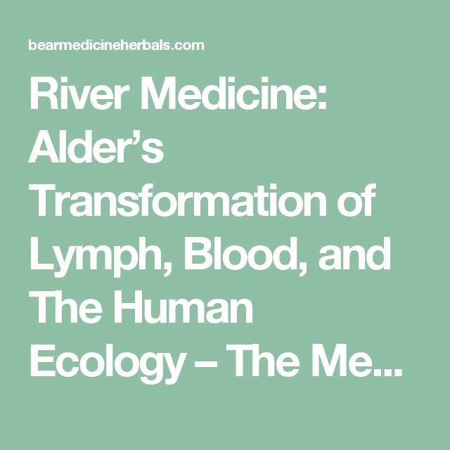 River Medicine: Alder's Transformation of Lymph, Blood, and The Human Ecology    – The Medicine Woman's Roots