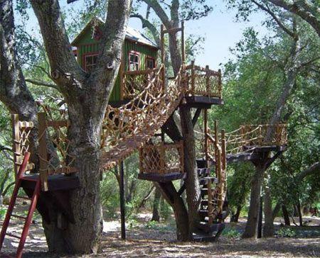 barbara treehouse Luxurious Tree Houses