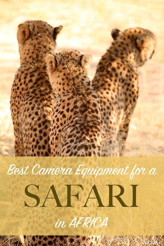 If you don't have a good camera/ lens yet, a trip to Africa is the perfect excuse to get one. Ultimate guide to the best camera equipment for an African safari.  Find out what camera and lenses to take for photographing animals. Basic tips for everyone - from beginners to hobby photographers going on safari.