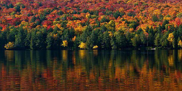Amazing Fall colour