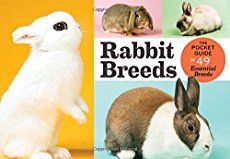List of all rabbit breeds recognized by ARBA, along with weights, brief descriptions and link to national rabbit breed club if available