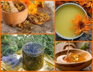 Home Made Herbal Salves