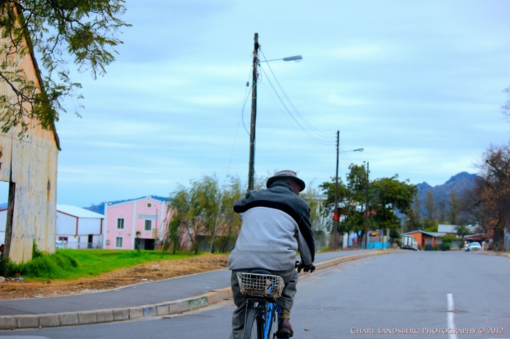 CLP0038 - man on bicycle
