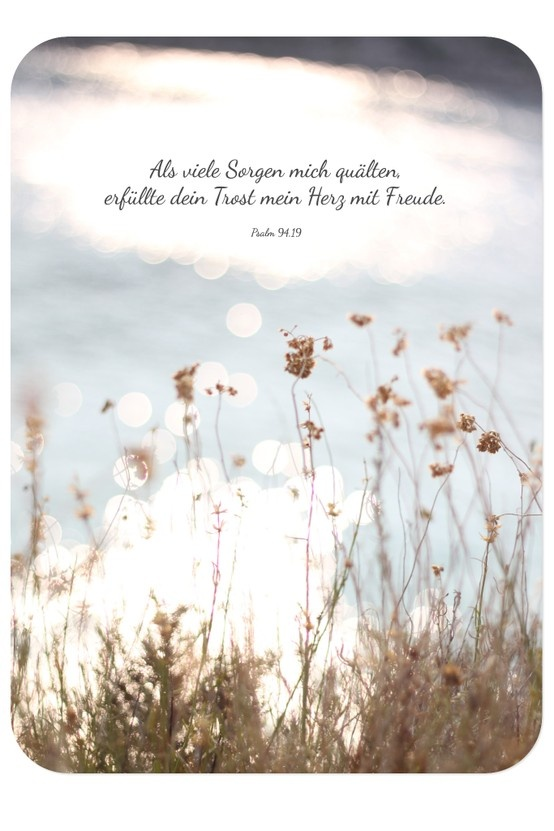 Bibel Trost