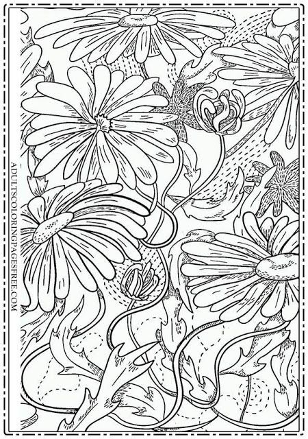 16 best Flowers Coloring Pages For Adults images on ...