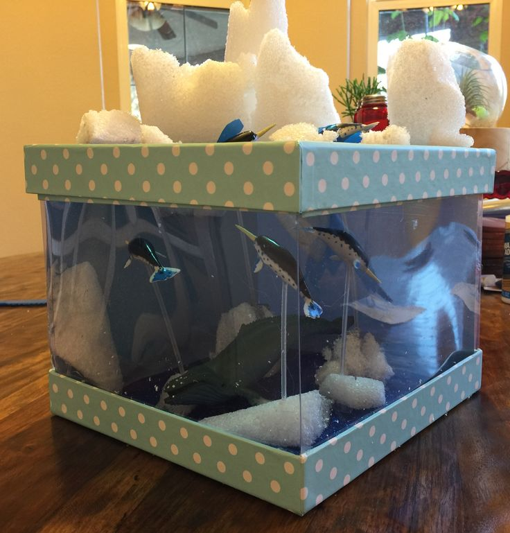 Kids Diorama With Details: Narwhal Arctic Diorama!