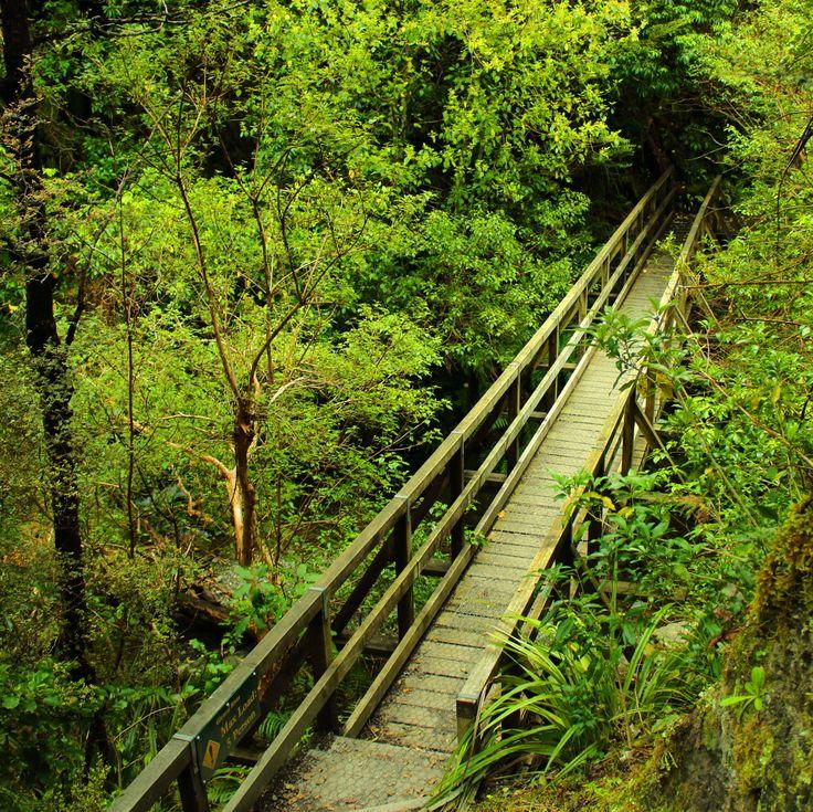 Glentui walkway