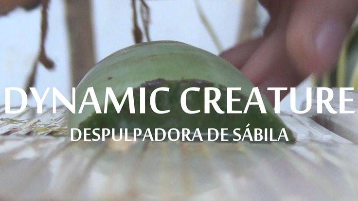Fabricar Despulpadora de sábila — Dynamic creature.
