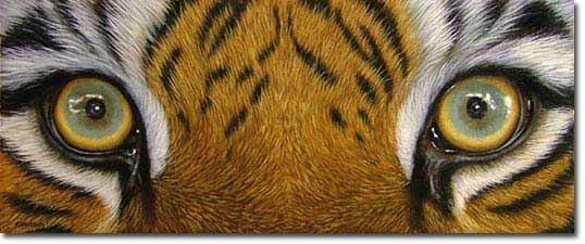 Tutorial on painting tiger eyes!  Awesome!