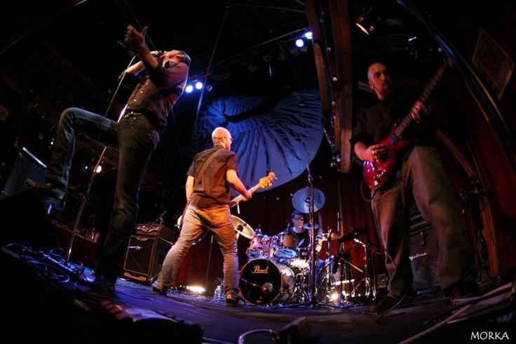 Agora Fidelio, 2010-10-29 (Zèbre de Belleville, Paris, France).  #concert #live #fisheye http://www.morka.fr