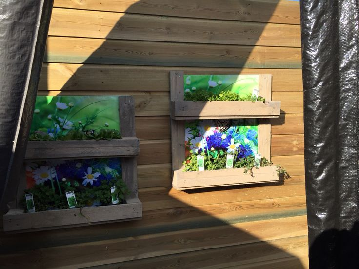 Wegwerp pallet omgebouwd tot plantenrekjes