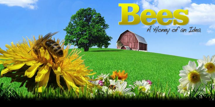 Bees: A Honey of an Idea (all about bees and pollination)