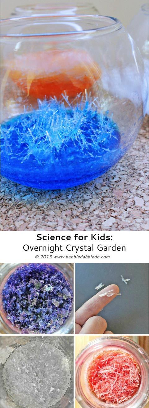 Science for Kids: How to grow crystals....OVERNIGHT!
