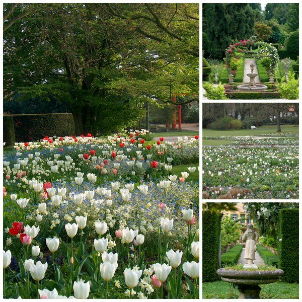 Villa Pisani Bolognesi Scalabrin. Waiting for spring :)  #Villapisanibolognesiscalabrin #spring #primavera #fiori #garden #giaridino #flower