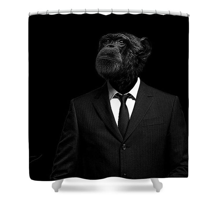 Chimpanzee Shower Curtain featuring the photograph The Interview by Paul Neville