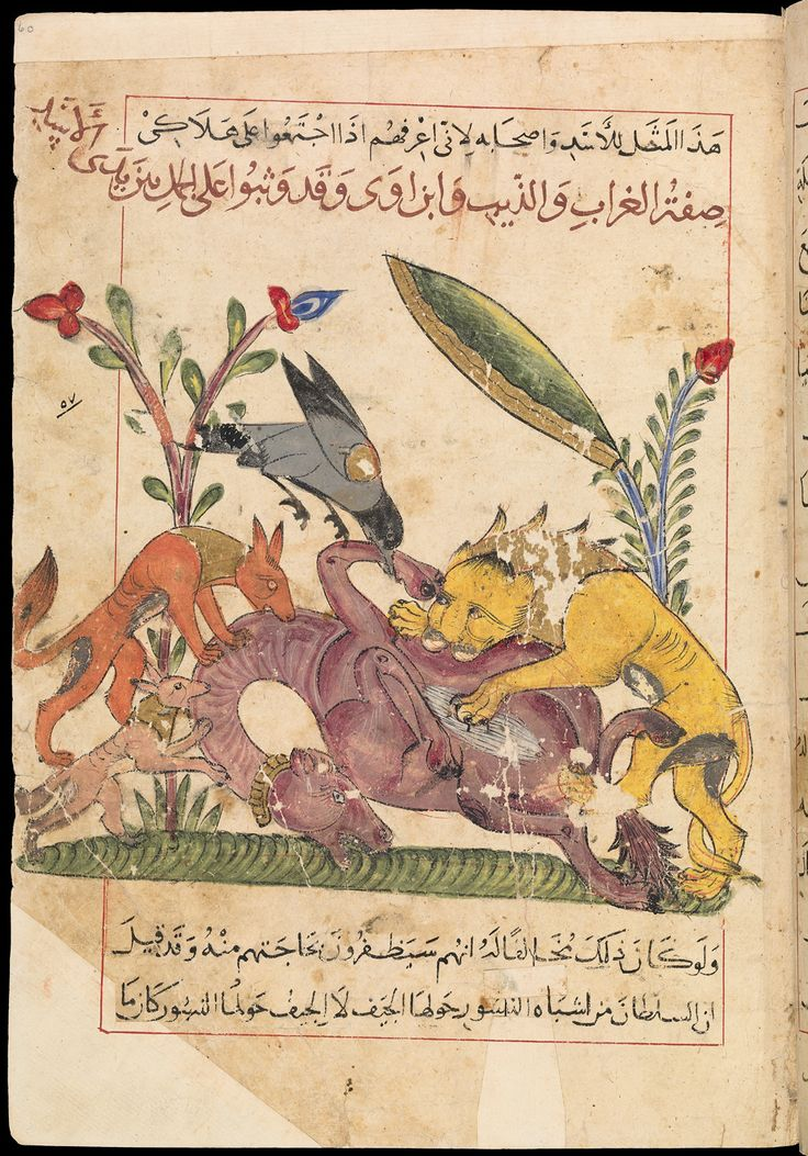 """KALILA AND DIMNA, IN ARABICSyria?, 1354, 14 1/2 x 8 3/4 in. (36.8 x 22.2 cm), MS. Pococke 400, fol. 75bIn the eighth century the """"Panchatantra,"""" a collection of Indian fables, was translated into Arabic by the Persian Ibn al-Muqaffa.   Here, Dimna the Jackal has plotted to kill Bull, the Lion King's faithful servant and must face the Leopard Judge. Moral: crime doesn't pay."""
