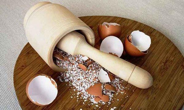 Эффективное использование яичной скорлупы